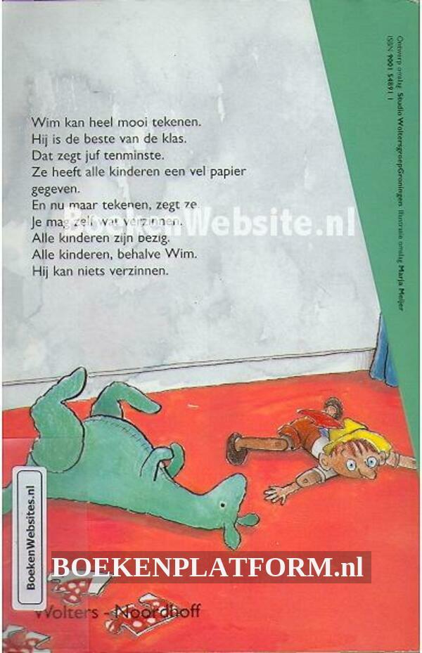 De kat in de gordijnen | BoekenPlatform.nl