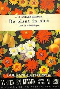 De plant in huis