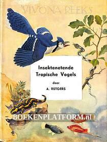 Insektenetende tropische vogels