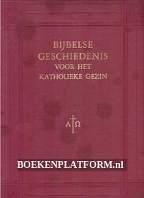 Bijbelse geschiedenis voor het katholieke gezin