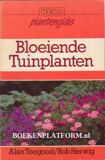 Bloeiende Tuinplanten