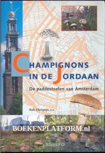 Champignons in de Jordaan