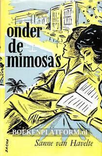 Onder de mimosa's