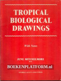 Tropical Biological Drawings