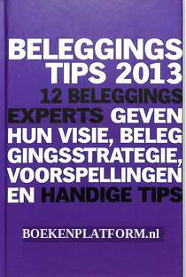 Beleggingstips 2013