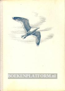 De vogels van strand en wad