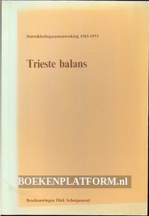 Trieste balans onwikkelingssamenwerking 1965-1973
