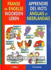 Franse en Engelse woorden leren