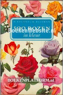 500 rozen in kleur