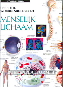 Het beeldwoordenboek van het Menselijk lichaam