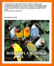 Dwerg-papegaaien