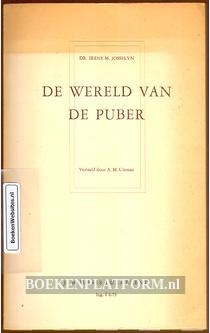 De wereld van de puber