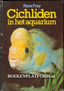 Cichliden in het aquarium