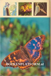 Das grosse Buch der Insekten
