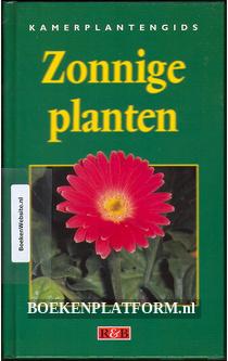Zonnige planten
