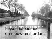 Tussen Sappemeer en Nieuw-Amsterdam