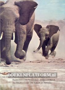Elefanten in Farbe