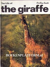 The Life of the Giraffe