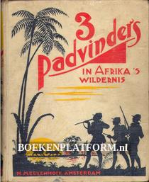 3 padvinders in Afrika's wildernis