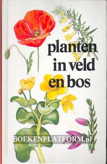 Planten in veld en bos
