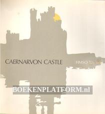 Caernarvon Castle