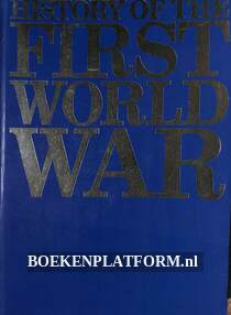 History of the First World War Vol. 01