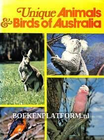 Unique Animals & Birds of Australia