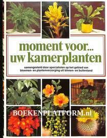 Moment voor uw kamerplanten