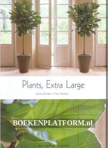 Grote planten in het interieur