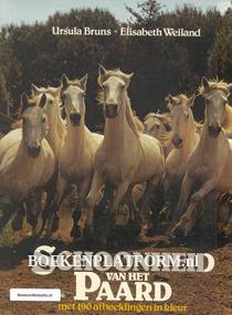 Schoonheid van het Paard