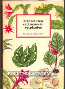 Bladplanten, Cactussen en Vetplanten