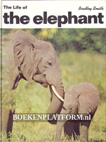 The Life of the Elephant