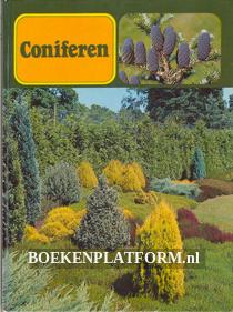 Coniferen