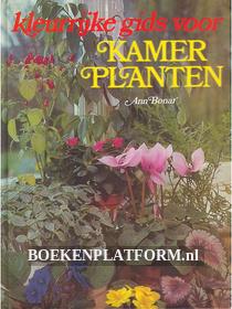 Kleurrijke gids voor Kamerplanten