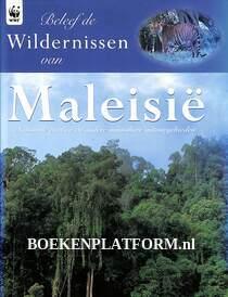Beleef de wildernissen van Maleisië