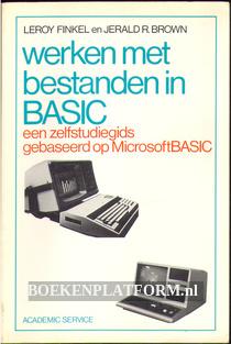Werken met bestanden in Basic