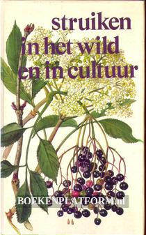 Struiken in het wild en in cultuur