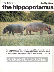 The Life of the Hippopotamus