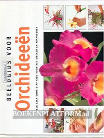 Beeldgids voor Orchideeen