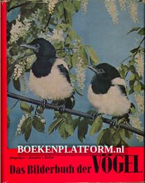 Das Bilderbuch der Vögel