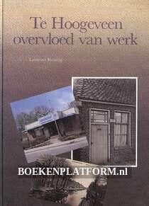 Te Hoogeveen overvloed van werk