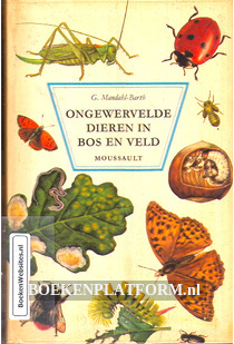 Ongewervelde dieren in bos en veld