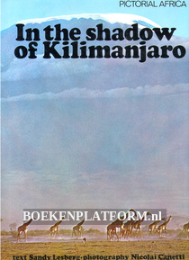 In the shadow of Kilimanjaro