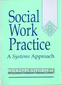 Social Work Practise