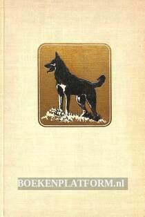 Xingoe, de hond