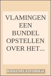 Vlamingen Een Bundel Opstellen Over Het Letterkundig Leven In Vlaanderen
